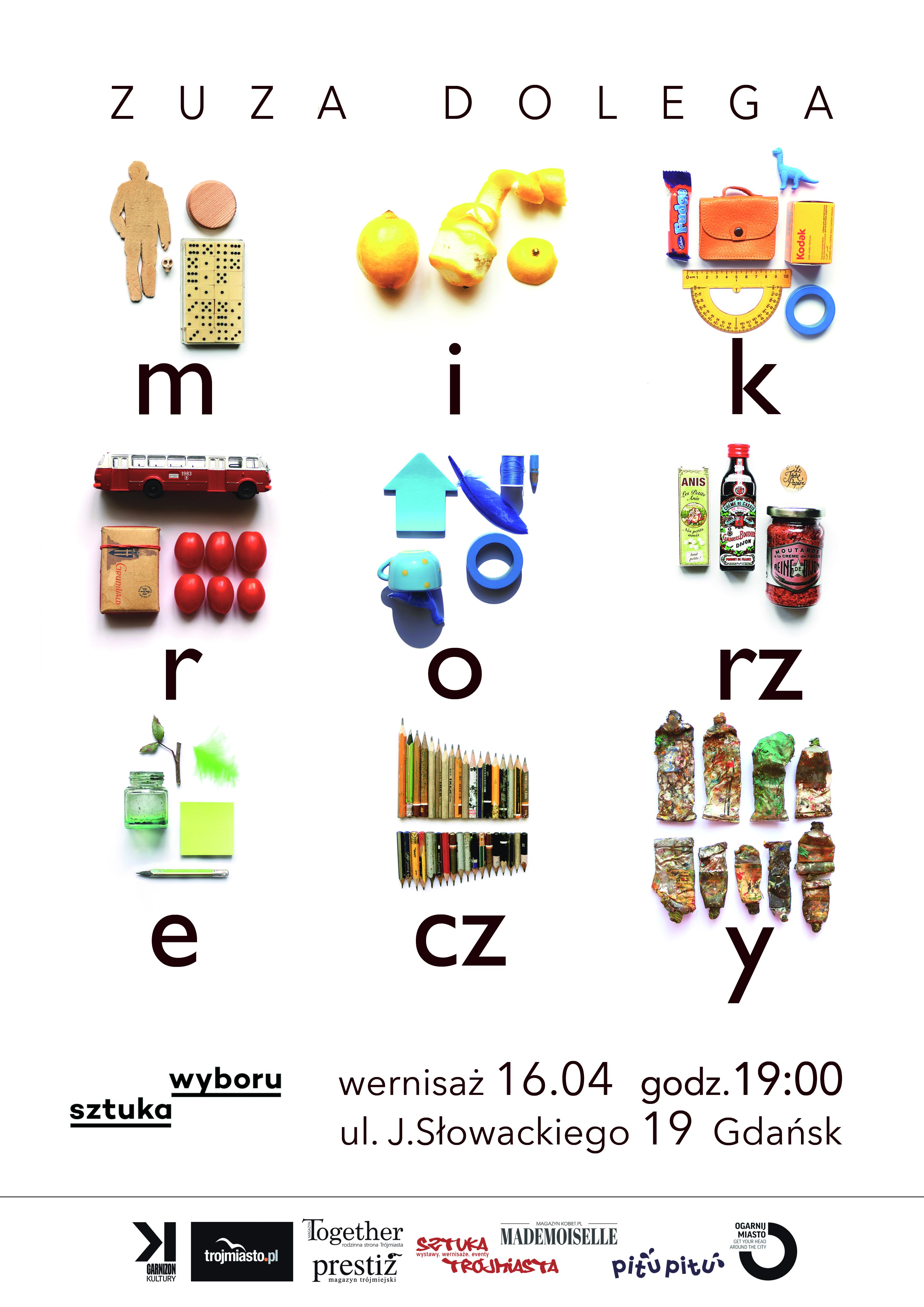 zuza dolega - mikrorzeczy plakat A3